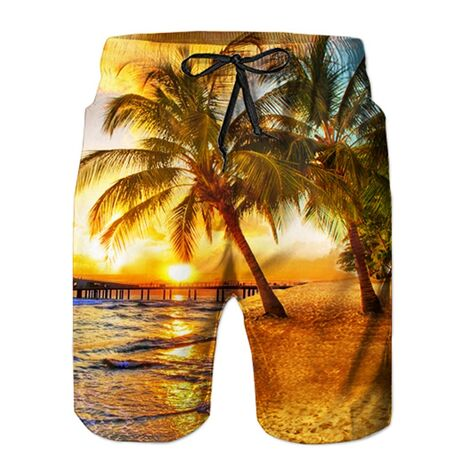 2020 New Summer Hot Men Beach Shorts Quick Dry 3d Coconut Tree Printed Elastic Waist Mens Shorts Fashion Board Shorts Casual
